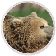 Bear Profile Round Beach Towel