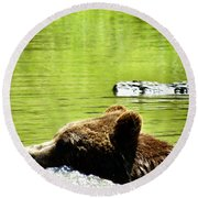 Bearly Swim Round Beach Towel