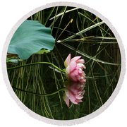 Beautiful Fallen Lotus Round Beach Towel