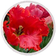 Beautiful From Inside And Out - Parrot Tulips In Philadelphia Round Beach Towel
