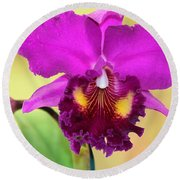 Beautiful Hot Pink Orchid Round Beach Towel