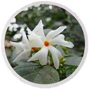 Beautiful White Flower With Orange Center Round Beach Towel