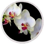 Beautiful White Orchids Round Beach Towel