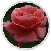 Beauty Of A Rose Round Beach Towel