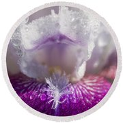 Bedazzled Purple And White Iris Round Beach Towel