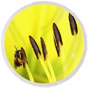 Bee A Little Different Round Beach Towel