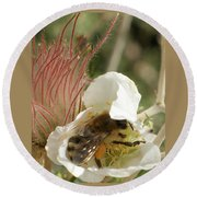 Bee Break Round Beach Towel