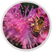 Bee On Lollypop Blossom Round Beach Towel
