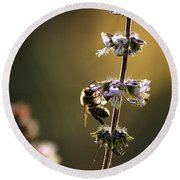 Bee On The Basil Round Beach Towel