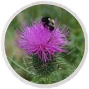 Bee On Thistle Round Beach Towel