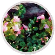 Begonias By Stone Wall Round Beach Towel
