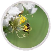 Being A Bee Round Beach Towel