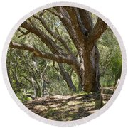 Bench And Tree In Cambria II Round Beach Towel