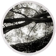 Beneath The Old Apple Tree Round Beach Towel