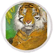 Bengal Tiger With Green Eyes Round Beach Towel by Jack Pumphrey