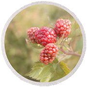 Berry Good Round Beach Towel by Kim Hojnacki