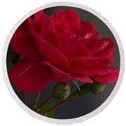 Betty's Red Rose II  Round Beach Towel