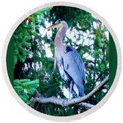 Big Bird - Great Blue Heron Round Beach Towel