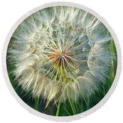 Big Dandelion Seed Round Beach Towel