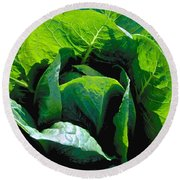 Big Green Cabbage Round Beach Towel