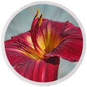 Big Red II Round Beach Towel