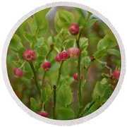 Bilberry Flowers Round Beach Towel