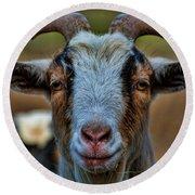 Billy Goat Round Beach Towel by Paul Ward