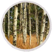Birch Tree Abstract Round Beach Towel