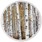 Birch Trees No.0644 Round Beach Towel