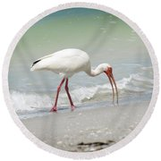 Bird Breakfast Round Beach Towel