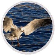 Bird Flying Round Beach Towel