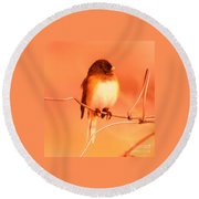 Bird On A Wire Round Beach Towel