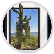 Bird On Cactus Round Beach Towel