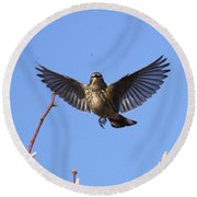 Bird Vs Bug Round Beach Towel