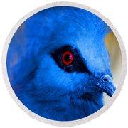 Bird's Eye View Round Beach Towel