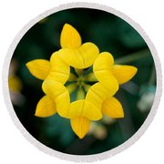 Bird's Foot Trefoil Round Beach Towel