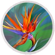 Birds Of Paradise 1 Round Beach Towel