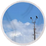 Birds Of Prey At Peace Round Beach Towel