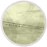 Birds On A Wire Tinted Round Beach Towel