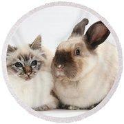 Birman Cat And Colorpoint Rabbit Round Beach Towel
