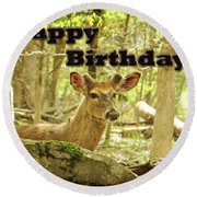 Birthday Greeting Card - Whitetail Deer Buck In Velvet Round Beach Towel