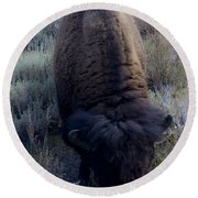 Bison At Ease Round Beach Towel