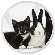 Black And Tuxedo Kittens With Dutch Round Beach Towel