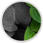 Black And White And Green Leaves Round Beach Towel