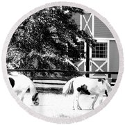 Black And White Clydesdale Grazing Round Beach Towel