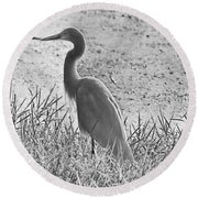 Black And White Egret  Round Beach Towel