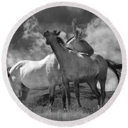 Black And White Photograph Of Montana Horses Round Beach Towel