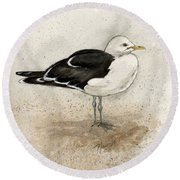 Black Backed Gull  Round Beach Towel