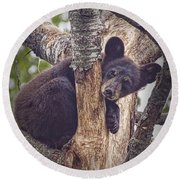 Black Bear Cub No 3224 Round Beach Towel