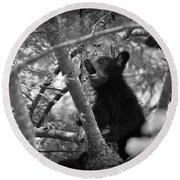Black Bear Cub Round Beach Towel